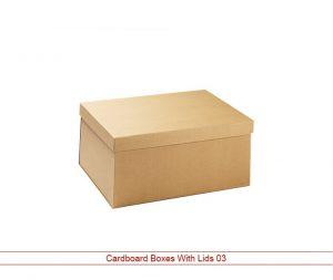 Cardboard Boxes Wholesale Lid