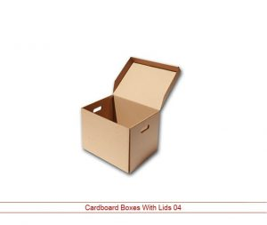Cardboard Boxes with Lid NY