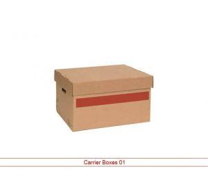 Custom Carrier Box