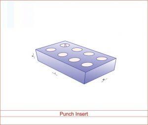 Punch Insert 02